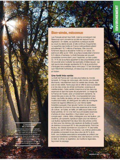 NEX110 Forêt française un trésor abattu