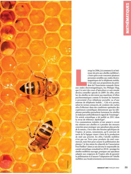 NEX110 Un message divin caché dans les ruches 1