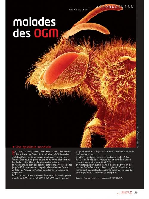 NEX067-Abeilles malades des OGM