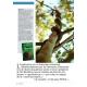 NEX068-Jan Kounen et la liane de l'esprit