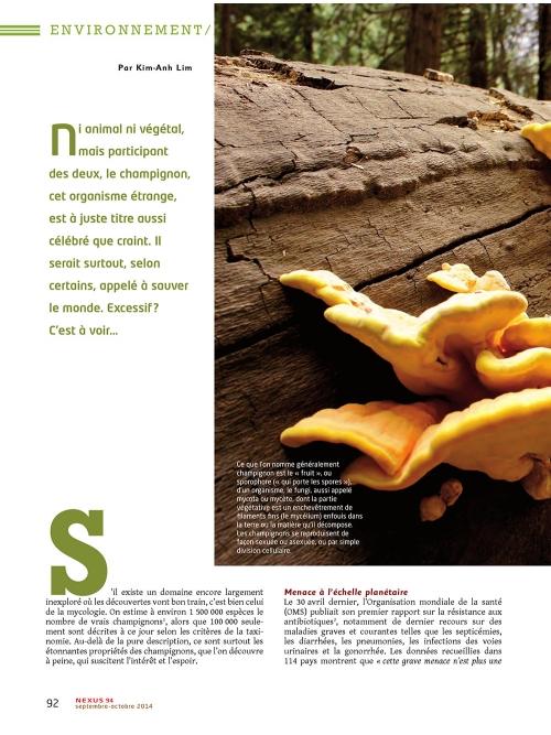 p1 NEX094-Les-champignons-sauveront-ils-le-monde