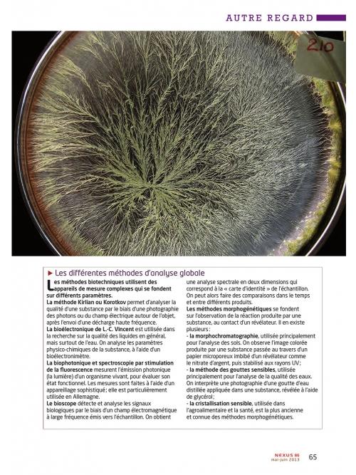 NEX086-Cristallisation-la-beaute-cachee-du-vivant