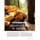 NEX094-Les-champignons-sauveront-ils-le-monde